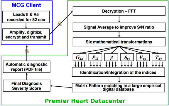thumbnail MCG flow chart